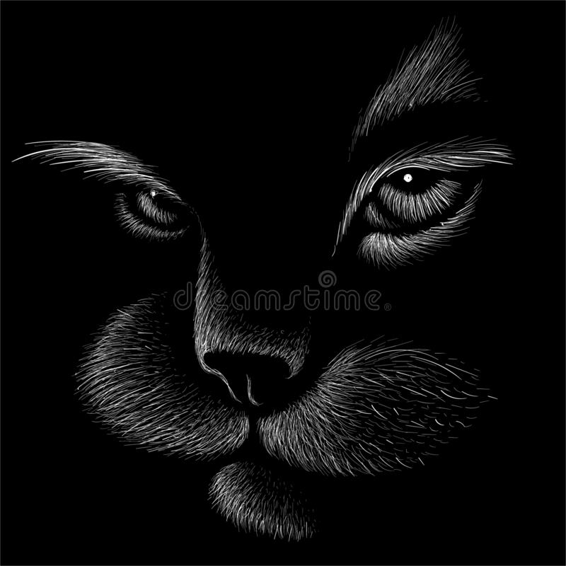 The Vector logo cat for tattoo or T-shirt design or outwear.  Cute print style cat background. royalty free illustration