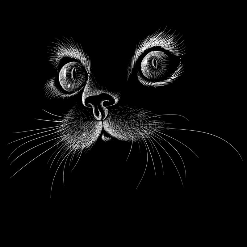 The Vector logo cat for tattoo or T-shirt design or outwear.  Cute print style cat background. vector illustration