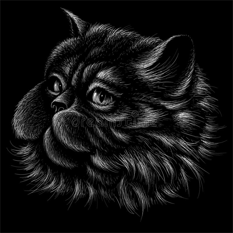 The Vector logo cat for tattoo or T-shirt design or outwear.  Cute print style cat background. This hand drawing would be nice to. Make on the black fabric or royalty free illustration