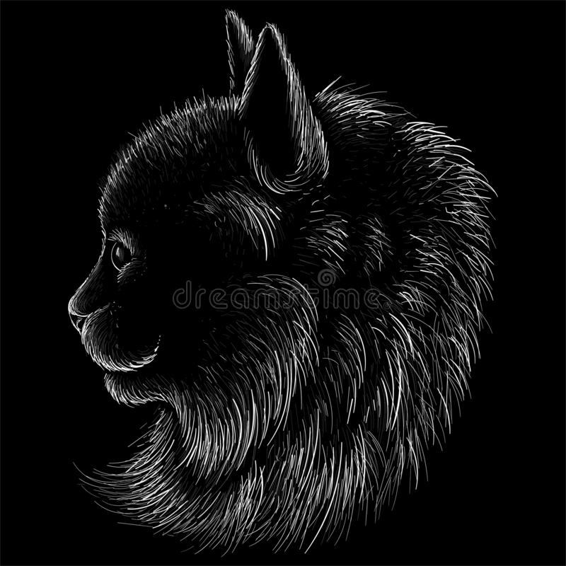 The Vector logo cat for tattoo or T-shirt design or outwear.  Cute print style cat background. The Vector logo cat for tattoo or T-shirt design or outwear stock image