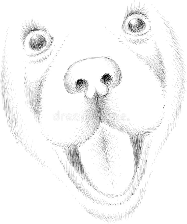 The Vector logo dog  or wolf for tattoo or T-shirt design or outwear.  Cute print style dog  or wolf  background. This drawing wou. Ld be nice to make on the royalty free stock photos