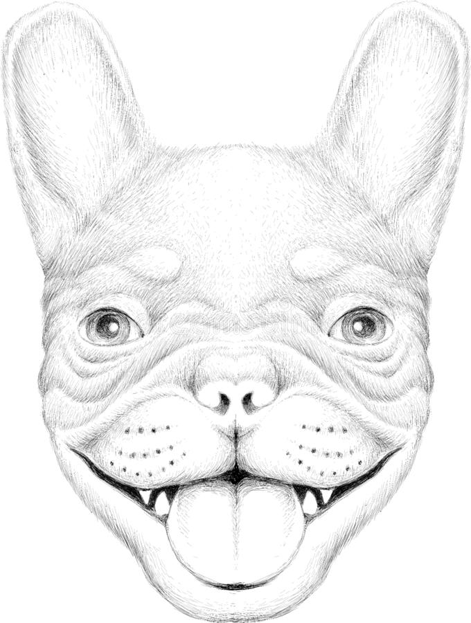 The Vector logo dog  or wolf for tattoo or T-shirt design or outwear.  Cute print style dog  or wolf  background. This drawing wou. Ld be nice to make on the royalty free stock photo
