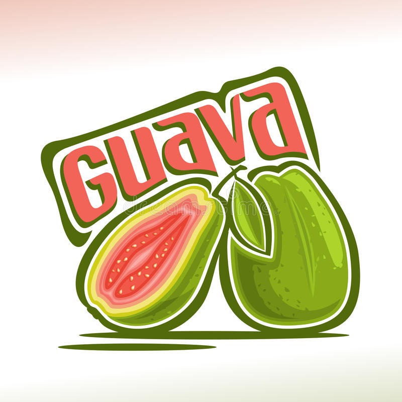 Vector logo Guava Fruit royalty free illustration