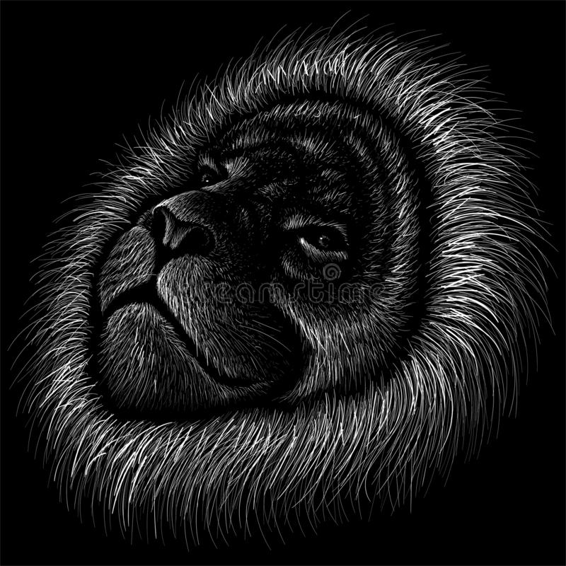 The Vector logo lion for tattoo or T-shirt print design or outwear.  Hunting style lions background. This drawing would be nice to make on the black fabric or stock image