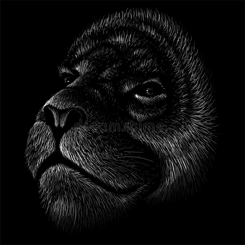 The Vector logo lion for tattoo or T-shirt print design or outwear.  Hunting style lions background. This drawing would be nice to make on the black fabric or royalty free stock photo