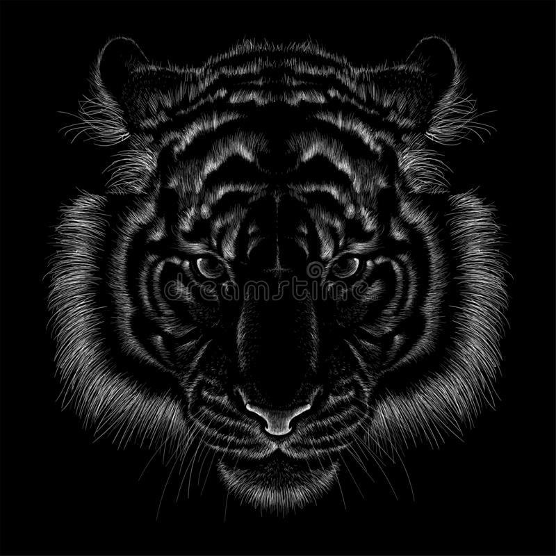 The Vector logo lion for tattoo or T-shirt print design or outwear.  Hunting style lions background. This drawing would be nice to make on the black fabric or royalty free stock photography