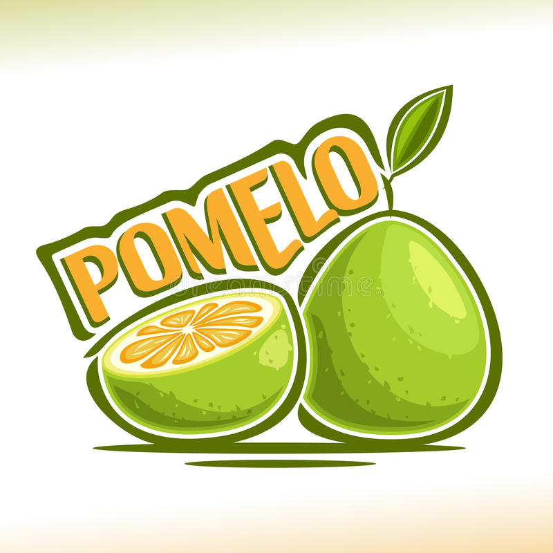 Vector logo Pomelo Fruit. Still life consisting of cut slice Green pummelo and whole exotic fruit with green leaf, abstract icon chinese pomelo with title text stock illustration