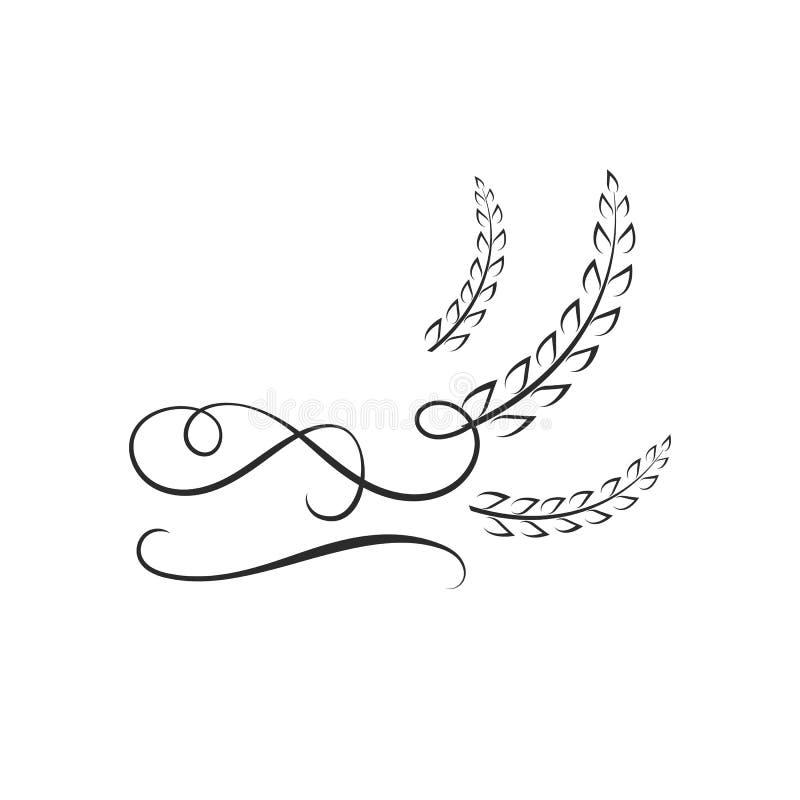 Vector Logo Template, arroz con remolinos caligráficos, icono del trigo stock de ilustración