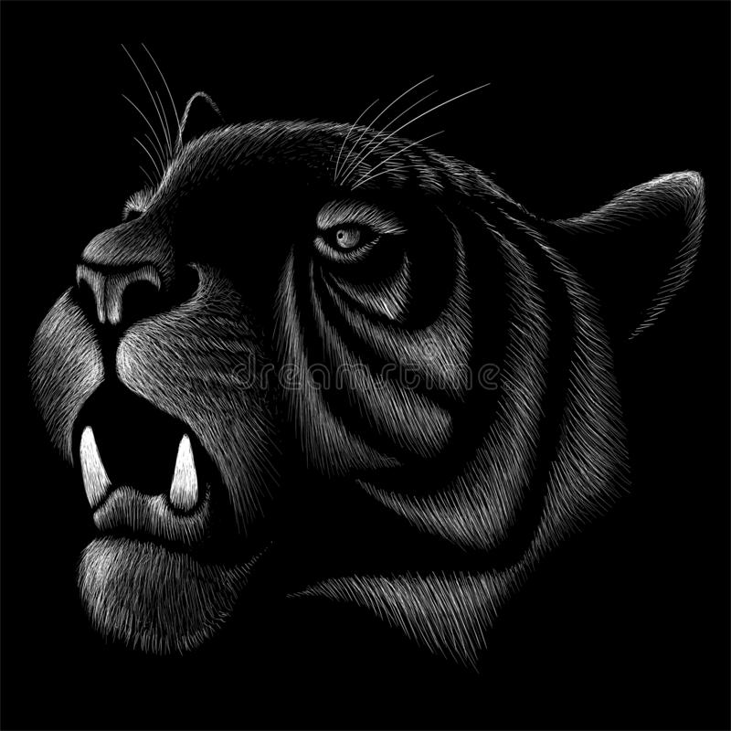 The Vector logo tiger for tattoo or T-shirt design or outwear. Hunting style tigers print on black background. The Vector logo tiger for tattoo or T-shirt stock images