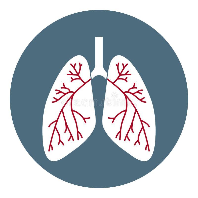Vector longenpictogram Gezondheidszorgsymbool dat op witte achtergrond wordt geïsoleerd Vlakke stijl Vectorillustratie voor Apps, vector illustratie
