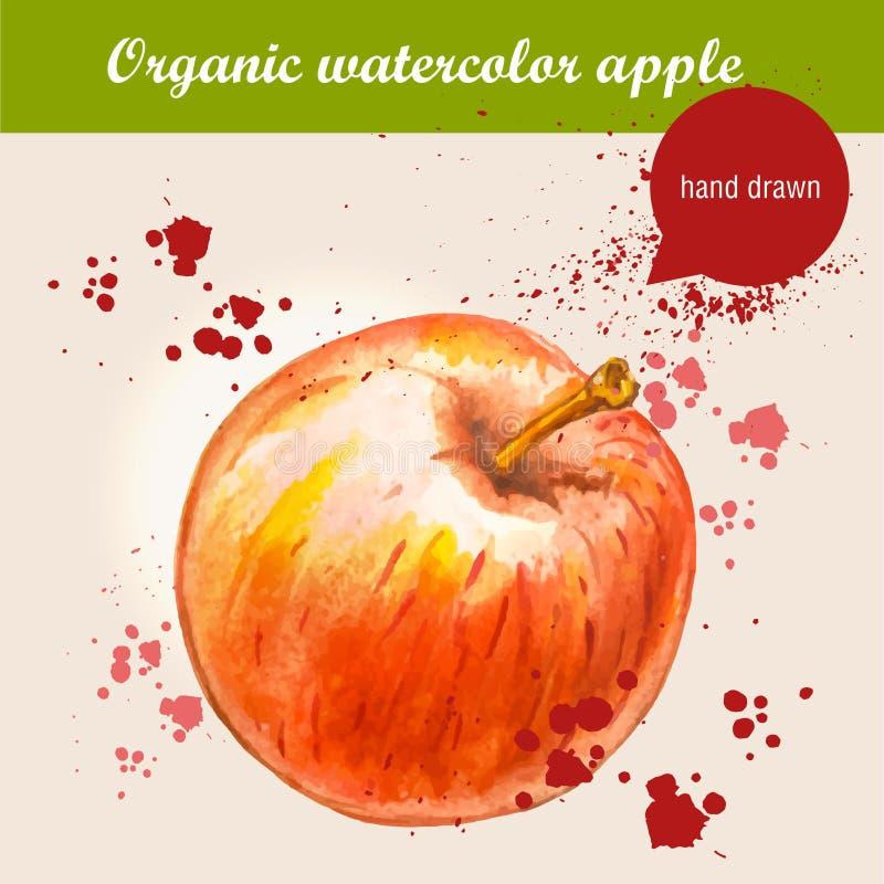 Vector a maçã vermelha madura tirada mão da aquarela com gotas da aquarela ilustração do vetor