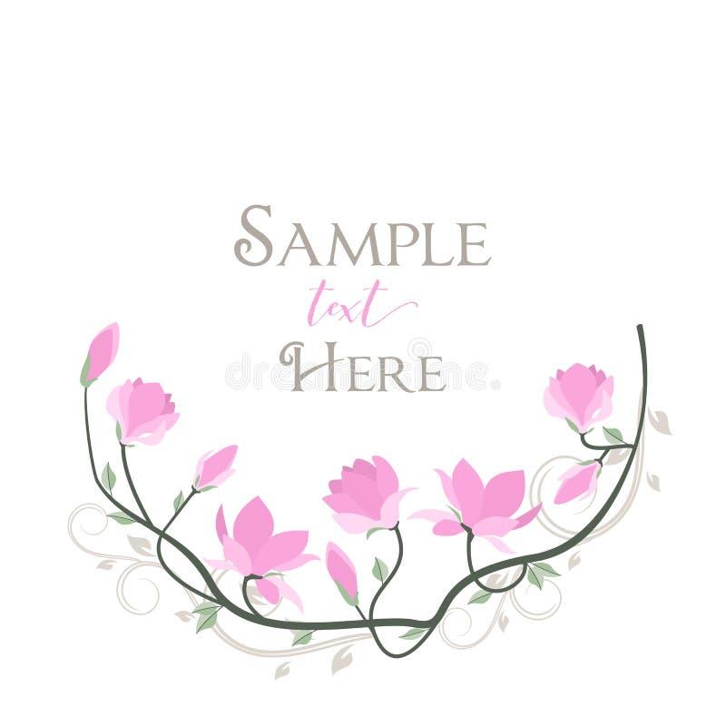 Vector magnolia flowers vector illustration