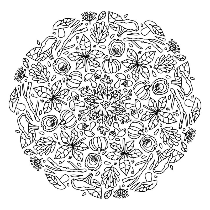 Vector Mandala Autumn Coloring Pages For Adults And Children Autumn Leaves Berries Mushrooms Cones And Twigs Autumn Stock Vector Illustration Of Greeting Ethnic 191320871