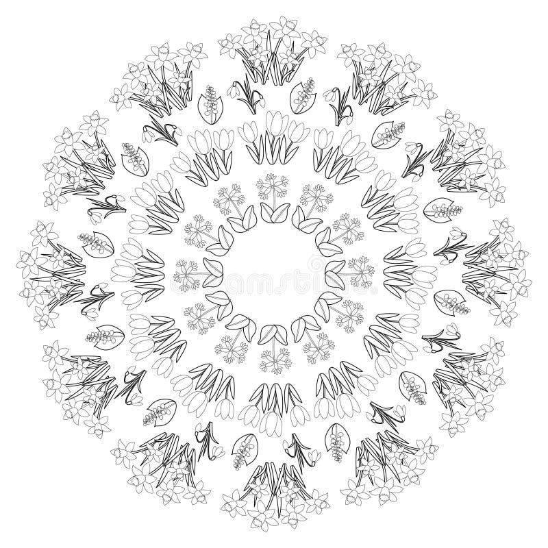 Vector a mandala floral da mola redonda branca preta - página adulta do livro para colorir - tulipa, dafodil, snowdrop, prímula e ilustração do vetor