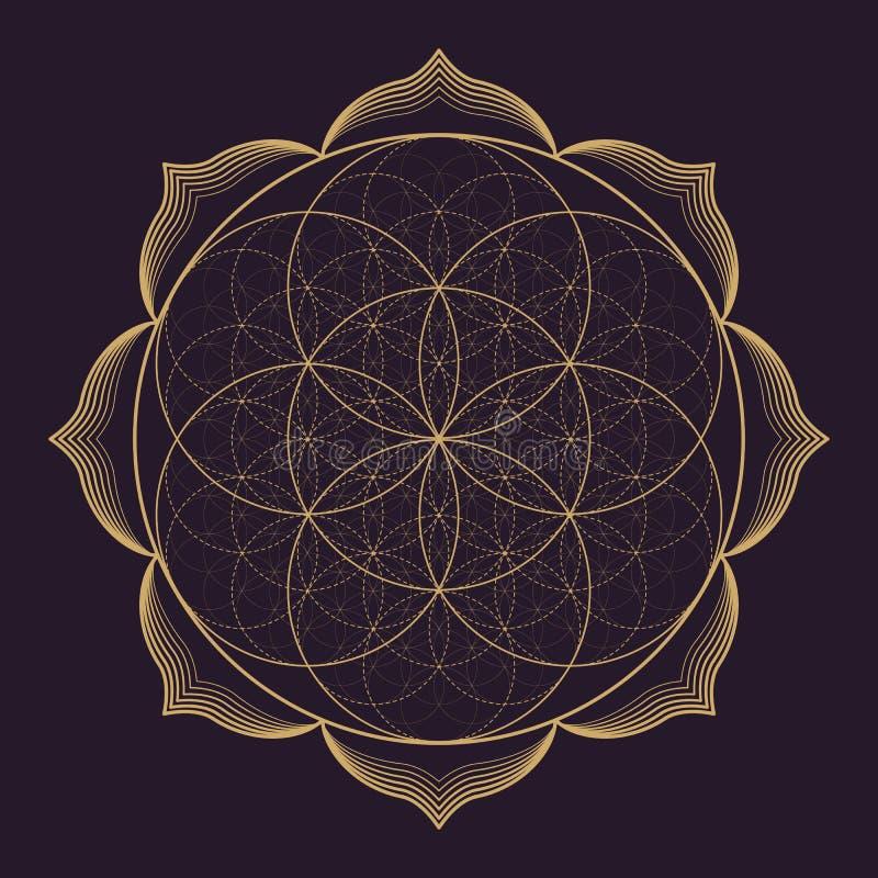 Free Vector Mandala Sacred Geometry Illustration Royalty Free Stock Photography - 81038667