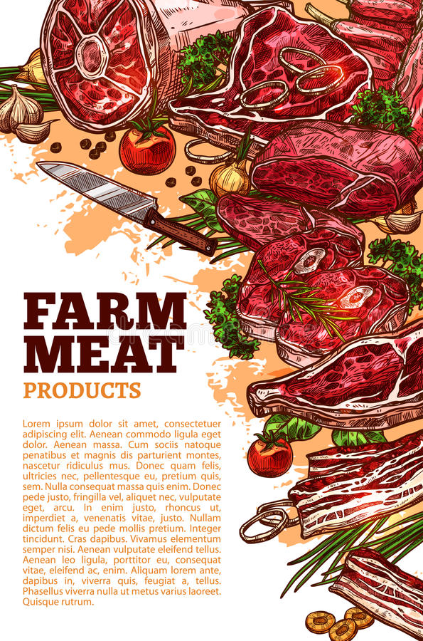 Vector meat poter for butchery or farm market. Farm fresh meat poster template for butchery shop or farmer market. Vector meat products of beef loin or royalty free illustration