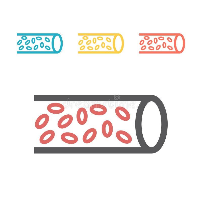Vector medische de structuur en het bloedcomponenten van het lijnpictogram Illustratie van een ader in een sectie stock illustratie