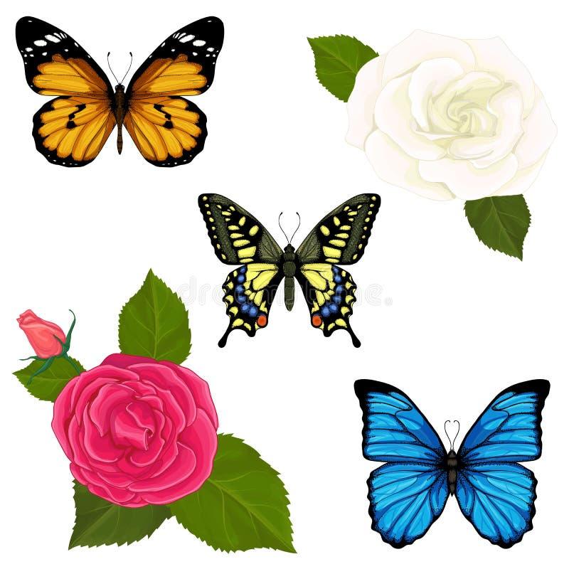 Vector met vlinders en bloemen van rozen wordt geplaatst die royalty-vrije illustratie