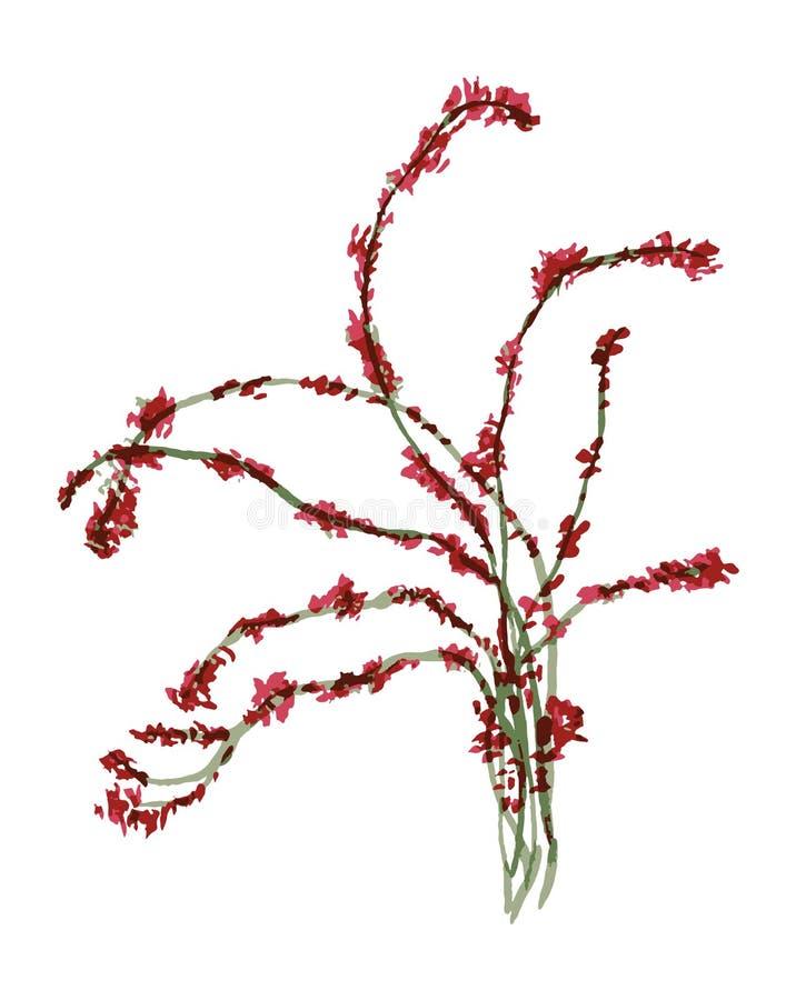 Vector minimalistic illustratie - Liana, groene winde met rode bloemen stock illustratie