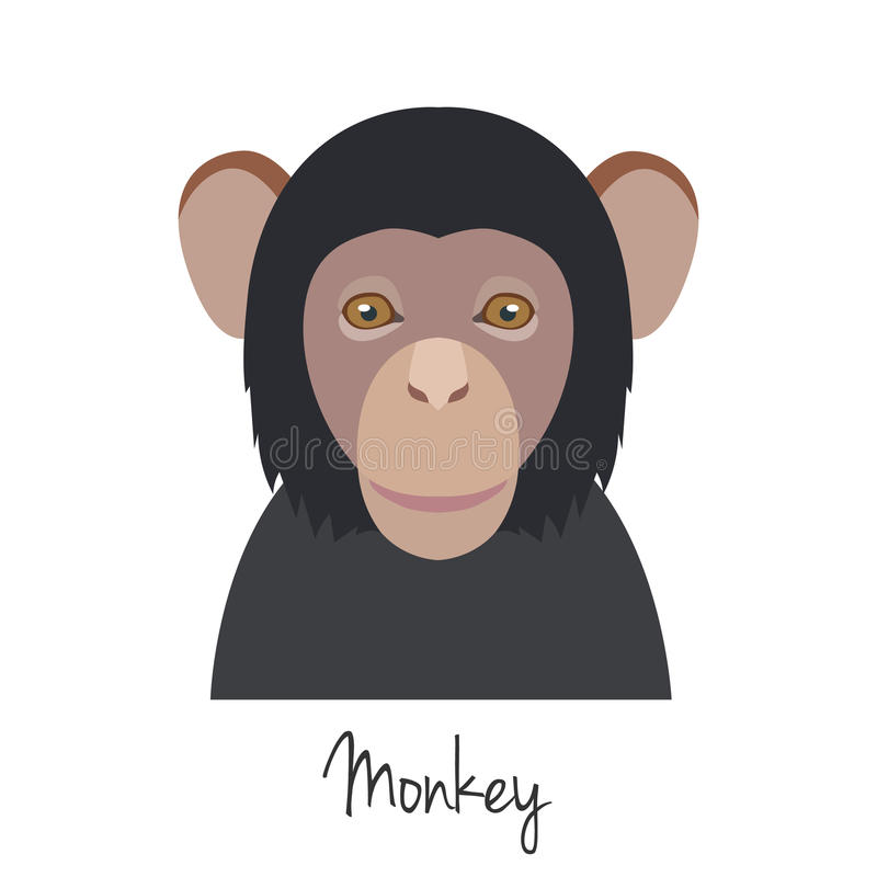 Vector monkey head isolated. Flat style, cartoon object. Poster banner print advertising, design element. Animal of Chinese zodiac symbol. mammal vector illustration