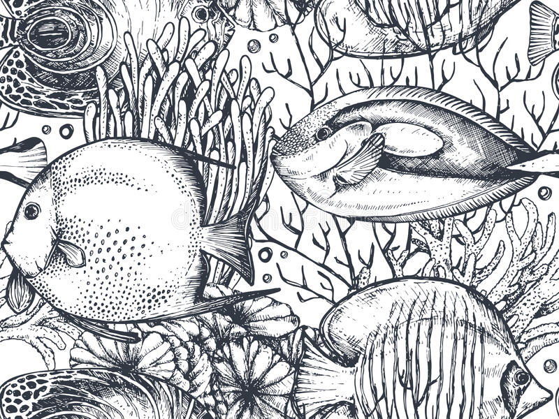 Vector monochrome безшовная картина моря с тропическими рыбами, водорослями, кораллами бесплатная иллюстрация