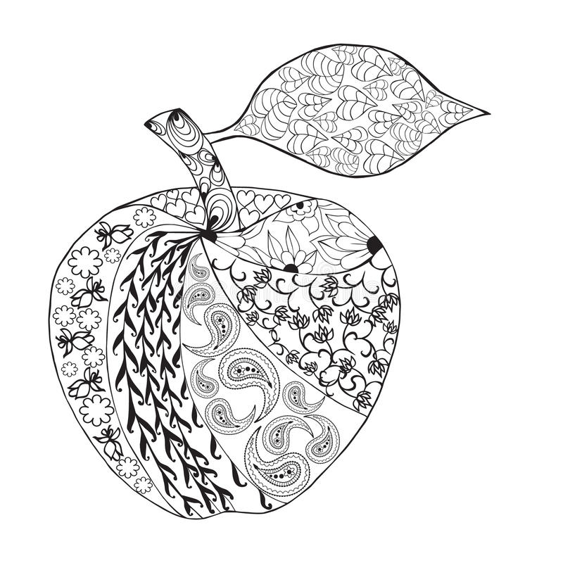 Vector Monochrome Apple zentangle style for coloring book. Hand Drawn Decorative Fruit illustration vector illustration