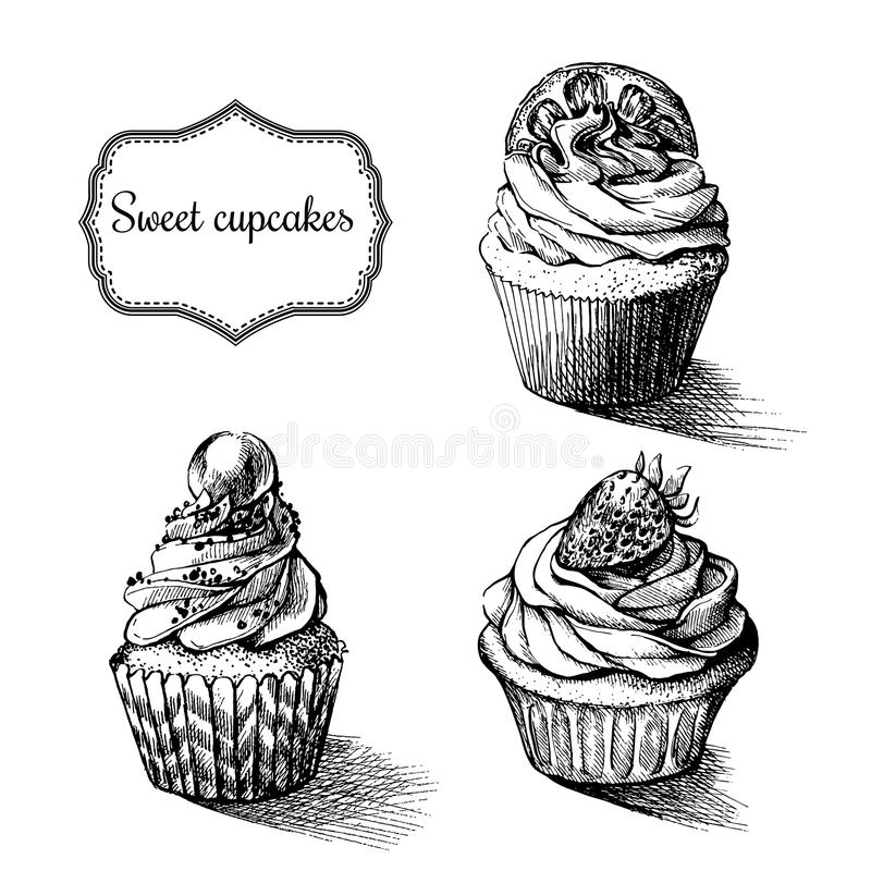 Vector monochrome background. Hand drawn sweet cupcakes with lemon. strawberry and pearl. Set for greeting card, postcard or adult royalty free illustration