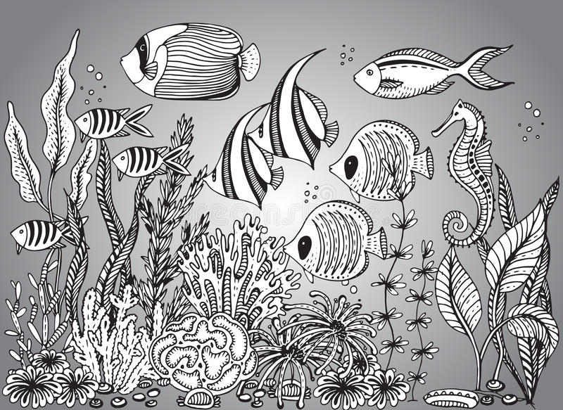 Vector monochrome hand drawn illustration with seashell royalty free illustration