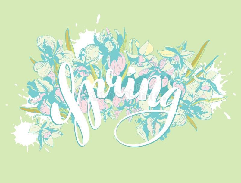 Vector Mooie van letters voorziende de Lentehand getrokken bloemenbloemen als achtergrond vector illustratie