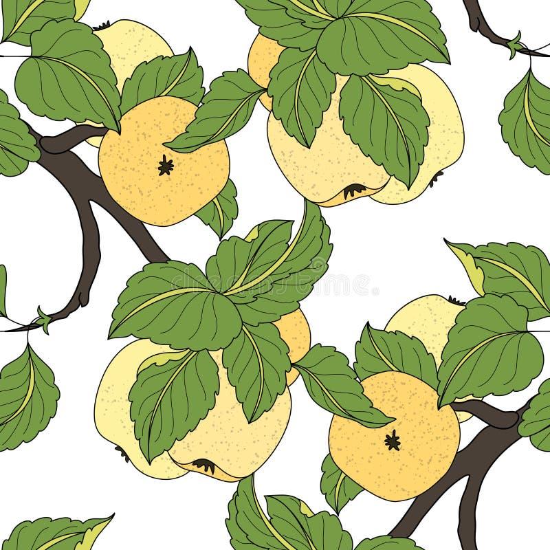 Vector Naadloos Gekleurd Fruitpatroon royalty-vrije illustratie