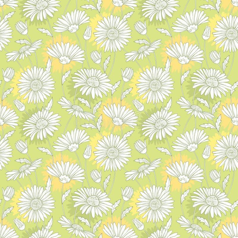 Vector naadloos patroon met bloem van de overzichts de witte Kamille op de pastelkleurachtergrond Kamillepatroon in contourstijl vector illustratie