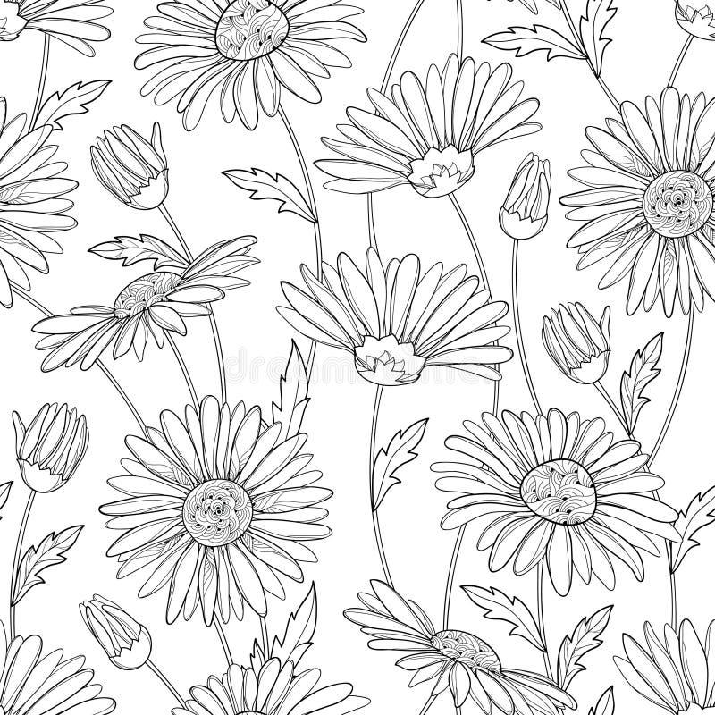 Vector naadloos patroon met de bloem, de knop en de bladeren van de overzichtskamille op de witte achtergrond Kamillepatroon in c royalty-vrije illustratie