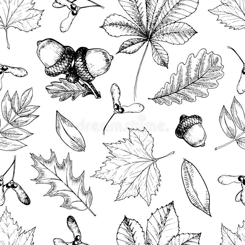 Vector naadloos patroon met de herfstbladeren Hand getrokken uitstekend stijl gegraveerd art. Eik, mapple, kastanje, eikels vector illustratie