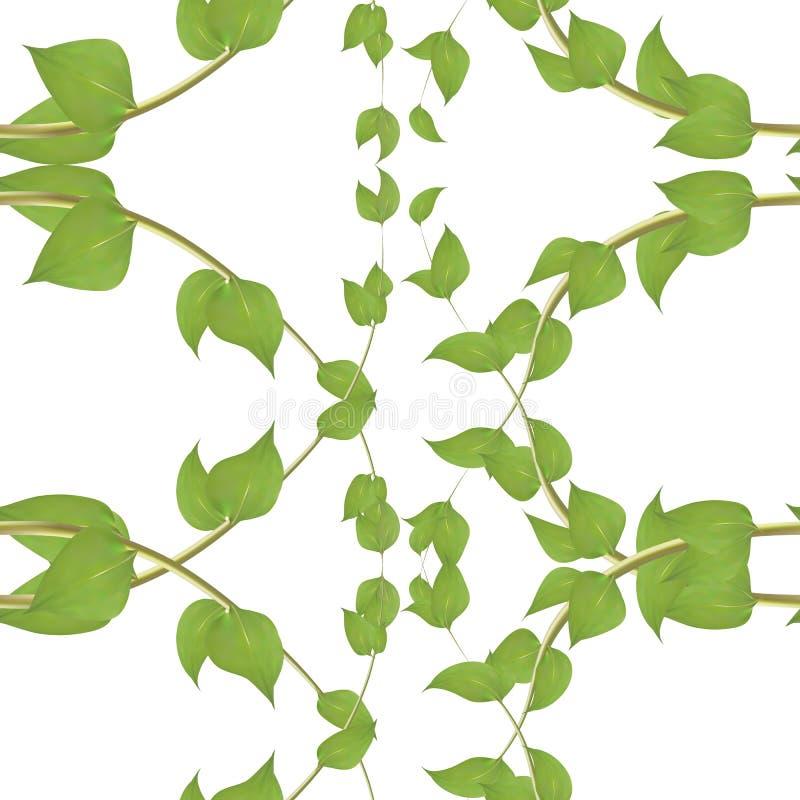 Vector naadloos patroon met groene klimopbladeren op witte achtergrond royalty-vrije illustratie