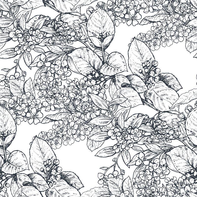 Vector naadloos patroon met hand getrokken bloemen, bloeiende boomtakken vector illustratie