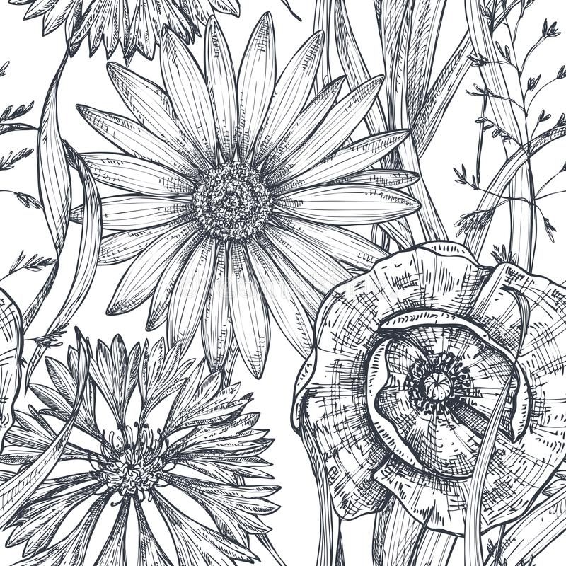 Vector naadloos patroon met hand getrokken papaver en andere bloemen en installaties vector illustratie