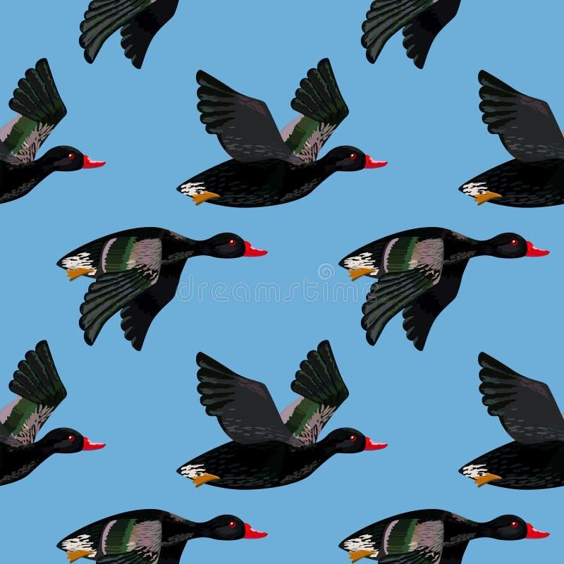 Vector naadloos patroon met vliegende zwarte eenden vector illustratie