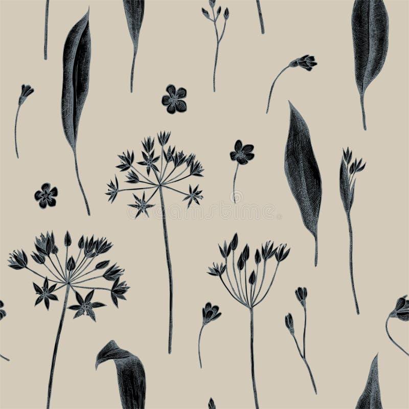 Vector naadloos patroon van wild knoflook Hand getrokken vectorillustratie stock illustratie