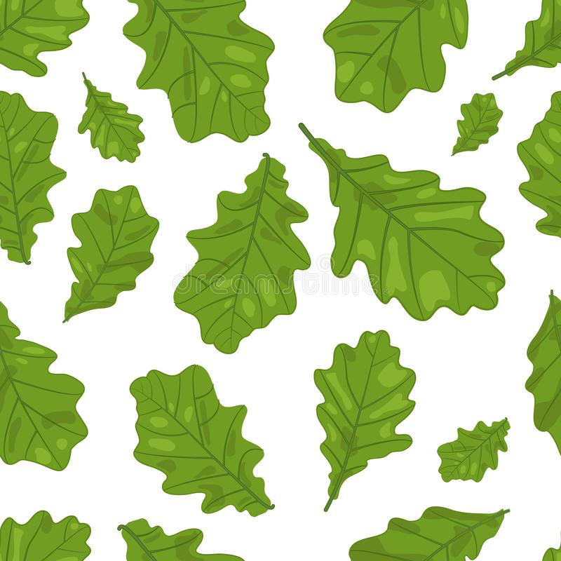 Vector Naadloos van Eiken Bladeren in Groene Kleuren stock illustratie