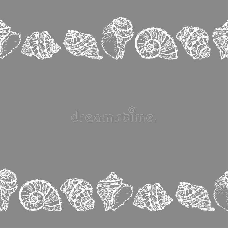 Vector naadloze decoratieve grens van witte zeeschelp stock illustratie