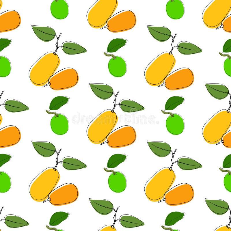Vector naadloze patroonachtergrond met hand getrokken kumquat en kalk in uitstekende stijl Op wit Gebruik voor textiel, stof, doc stock illustratie