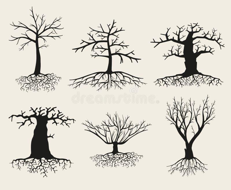 Vector naakte boomsilhouetten met wortels stock illustratie