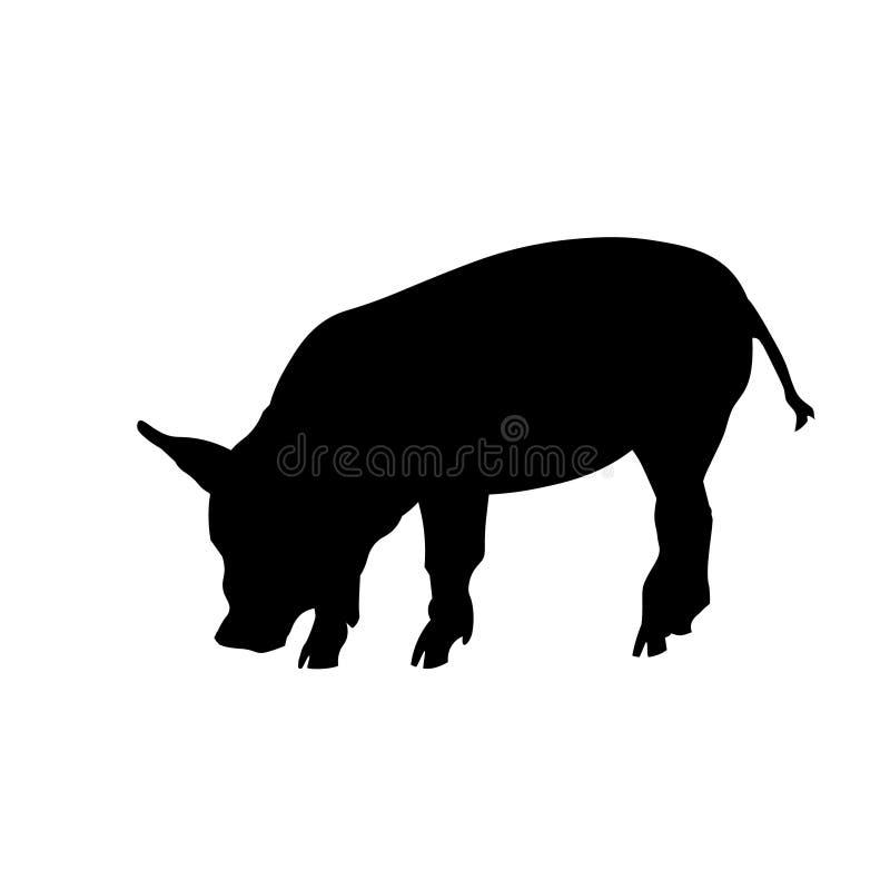 Vector nacional del cerdo stock de ilustración