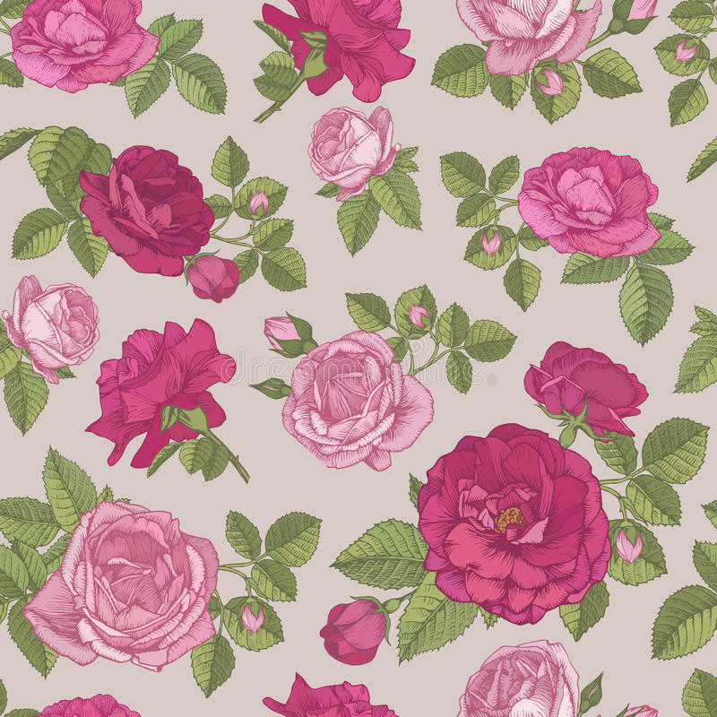 Vector nahtloses mit Blumenmuster mit Hand gezeichneten roten und rosa Rosen auf beige Hintergrund lizenzfreie abbildung