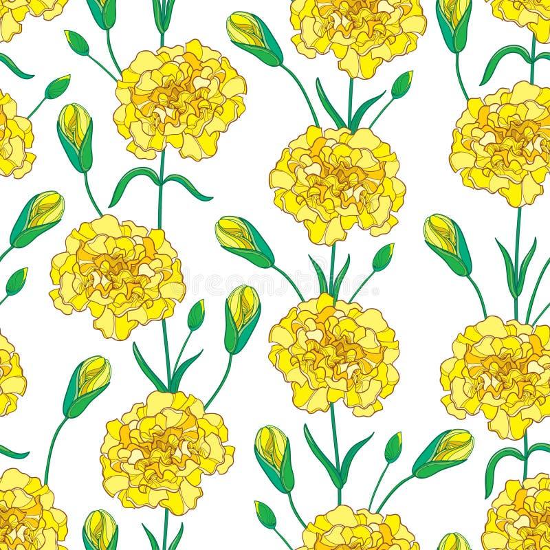 Vector nahtloses Muster mit Entwurf Gartennelke, oder Nelke blüht, knospt und Blätter in Gelbem und in Grünem auf dem weißen Hint lizenzfreie abbildung