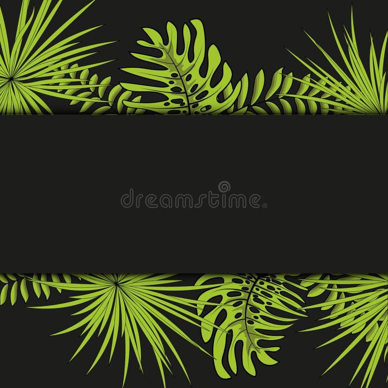 Vector nahtloses tropisches Muster, klares tropisches Laub, mit Palmbl?ttern modernes helles Sommerdruckdesign Schwarzer Hintergr vektor abbildung