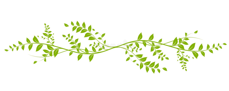 Vector natural design element stock illustration