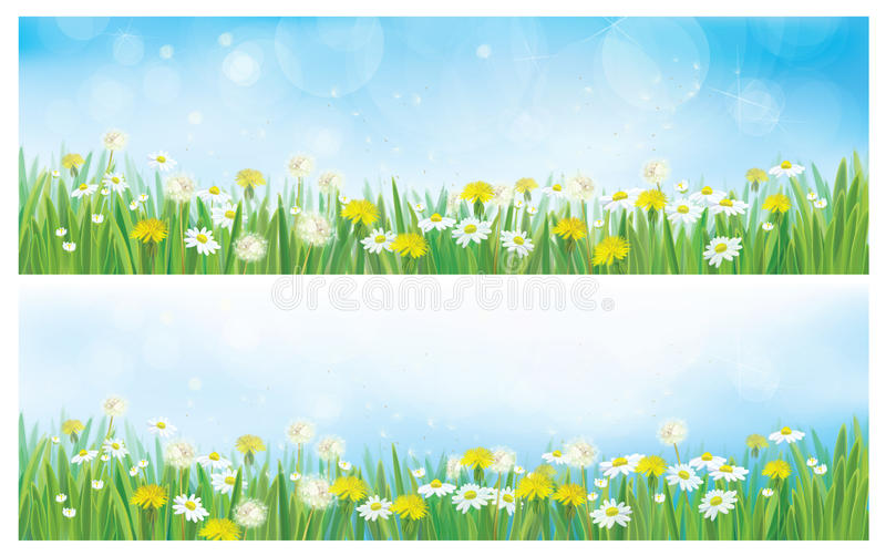 Download Vector Nature Spring Backgrounds Stock