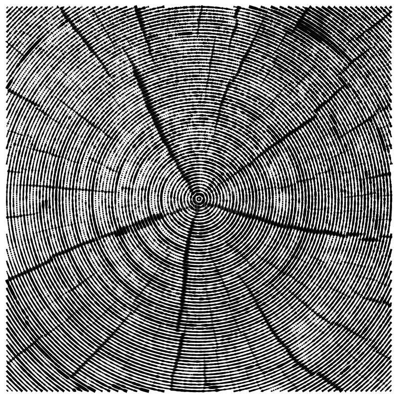 Vector natuurlijke illustratie van de boomstam van de de besnoeiingsboom van de gravurezaag schets van houten textuur vector illustratie