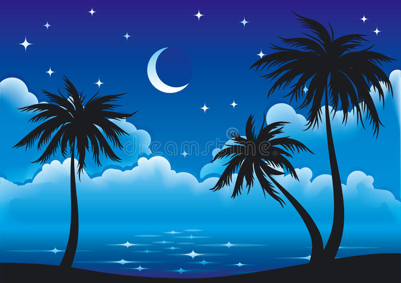 Vector Night Coast Royalty Free Stock Photos